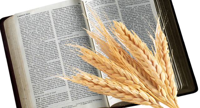 What Foods Does The Bible Say Not To Eat